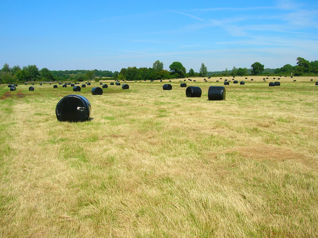 Wrapped Bales near Forge House