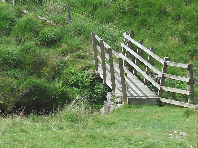 Footbridge across the Doethie Fach, Ceredigion
