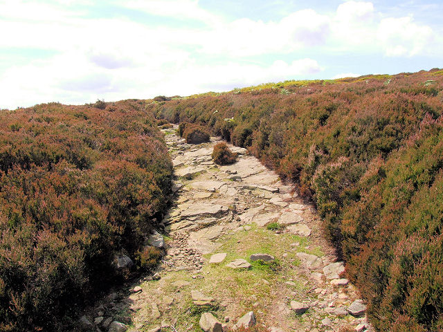 Track near Top Laithe