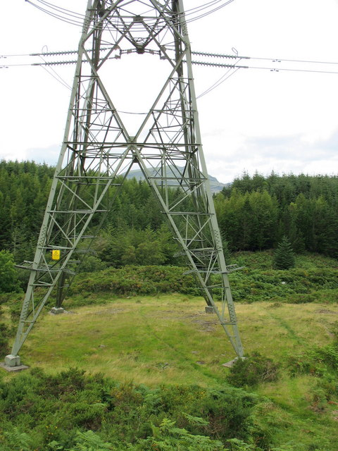A bracken-free section of the path beneath the pylon