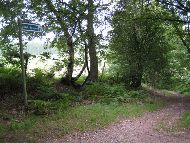 Footpath off Common Lane towards Harley Thorns