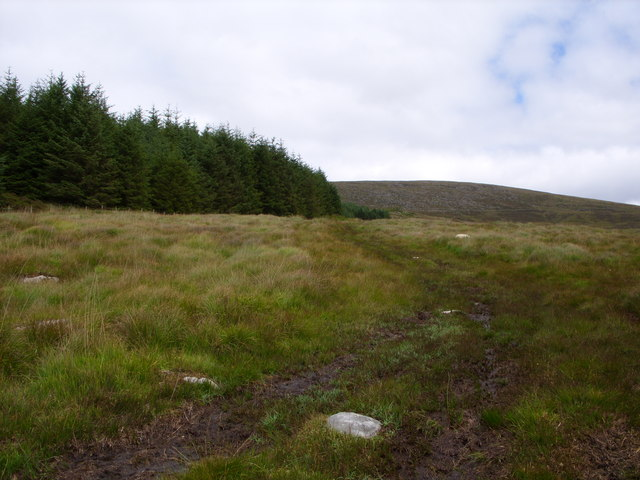 Bardrochwood Moor