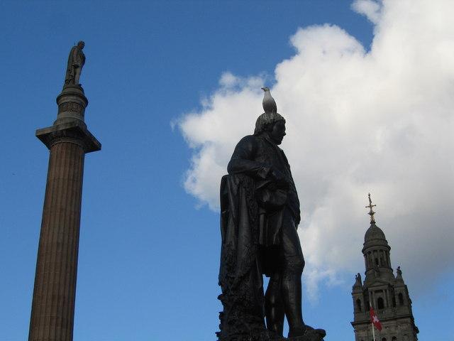 Seagull, Glasgow