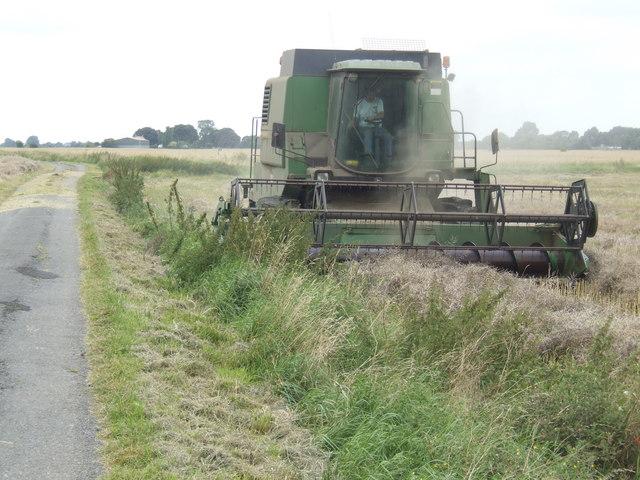 Harvesting oilseed rape