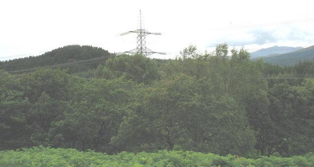 Coed Llennyrch, power lines and Coed Felinrhyd