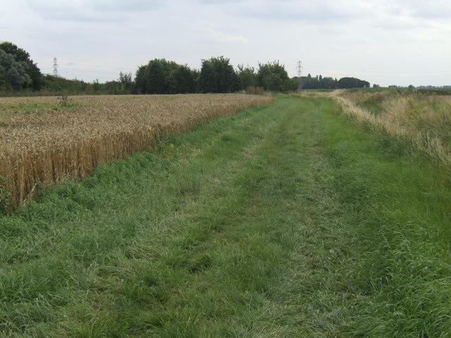 Bridleway alongside Lady Nunn's Old Eau