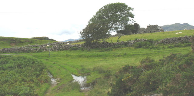 Track junction below the ruined Ty Newydd