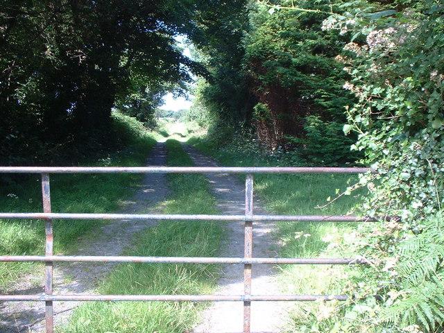 Gate and track leading to Ballacrebbin