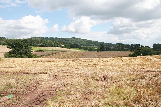 Fields opposite Uplands Farm