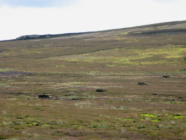 Grouse butts on Horseshoe Plain