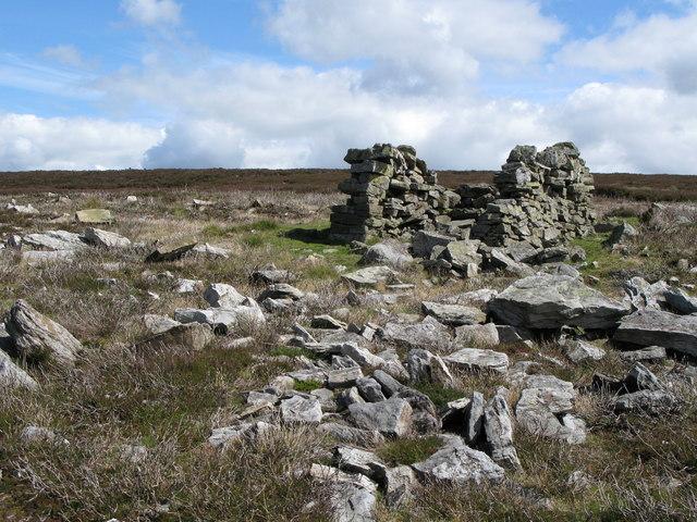 Sheepfold below Black Hill