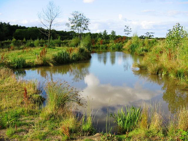 Coarse fishing pond at green lane farm graham for Ponds to fish in near me