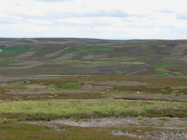 Muggleswick Common
