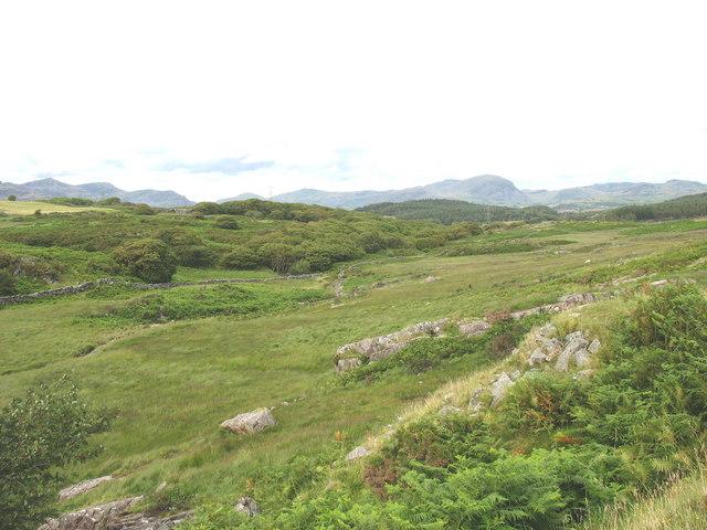 View along Ceunant Geifr in the direction of Ceunant Llennyrch