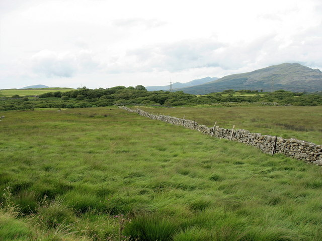 Major boundary wall crossing the Ceunant Geifr valley