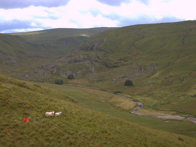 Lower Cwm Hengwm