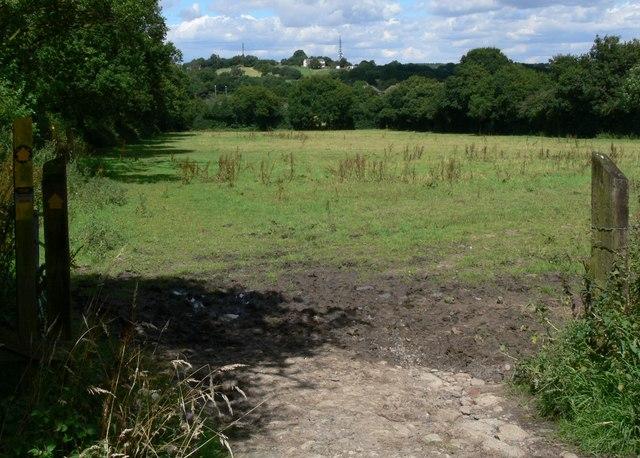 Public Footpath across the fields.