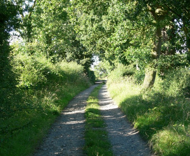 Track near Ratby Burroughs