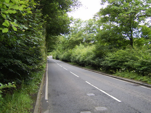 Stockiemuir Road