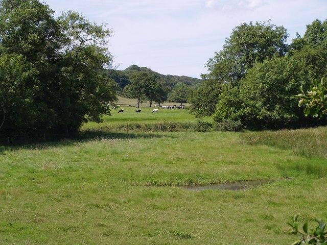 Torridge valley