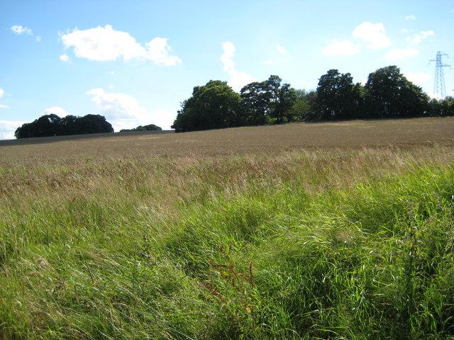 Field near Charnes Old Hall