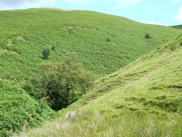 Cwm Nant Iwan, near Doethie Fach, Ceredigion
