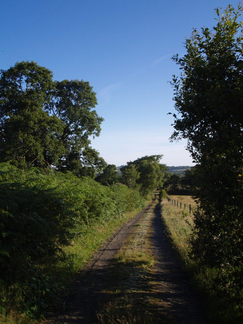 Halwill Bridleway 11