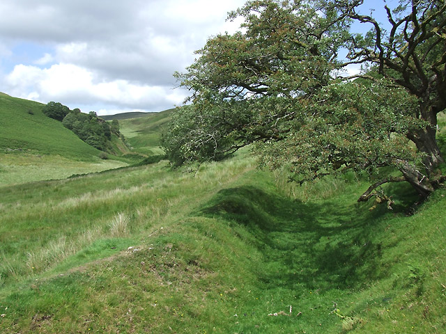 Old Field Boundary, Cwm Doethie Fach, Ceredigion