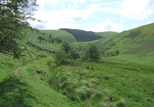 Old Field Boundary and Cwm Doethie Fach near Nant Iwan, Ceredigion
