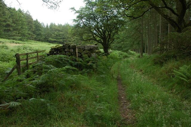 Bridleway and track through Miterdale