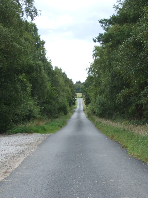 Road from Letter