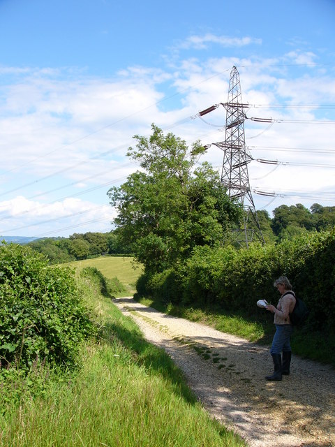 South Downs Way, near Buriton