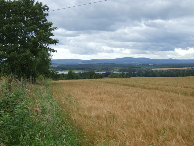 View towards Loch of Skene