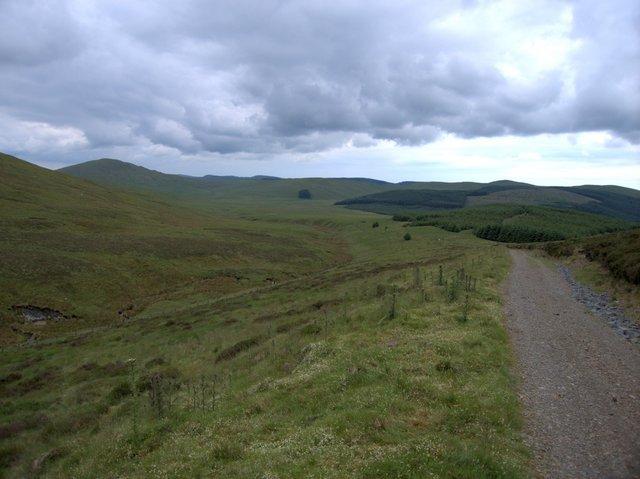 Llygnant valley