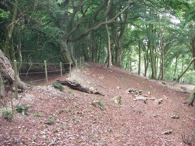 Frankenbury camp ramparts