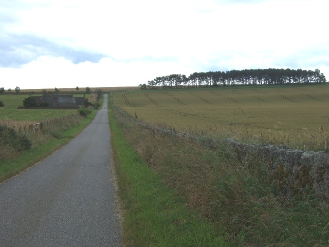 Road by Knockquharn Cottages