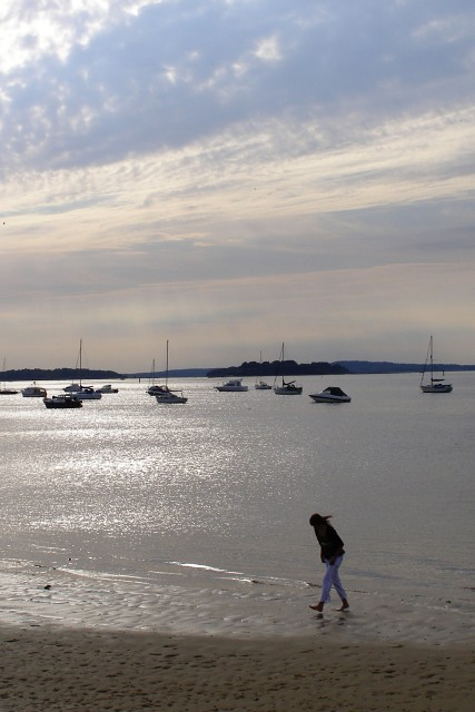 Poole Harbour west of South Haven Point