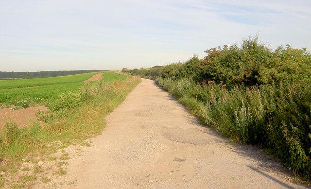 Lane and path off Retford Road.