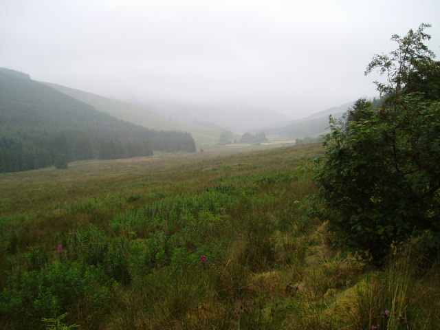 Approach to Shinnelhead from the forest.