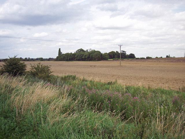 Looking towards Newstead Farm