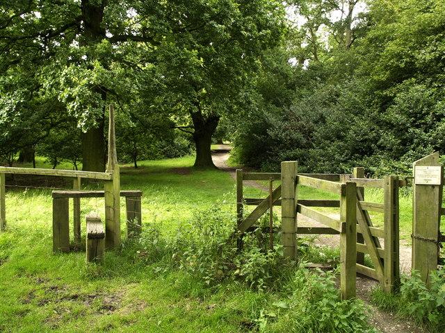 Footpath through Burton Bushes
