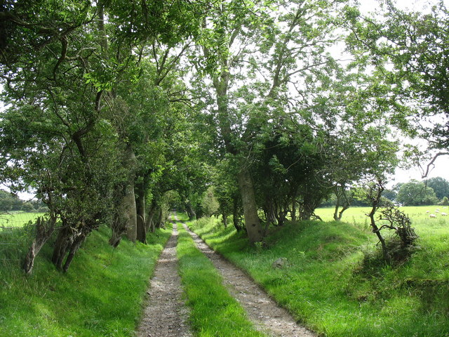 Farm road with public ROW linking Ty Mawr Llan Farm and Cors Malltraeth