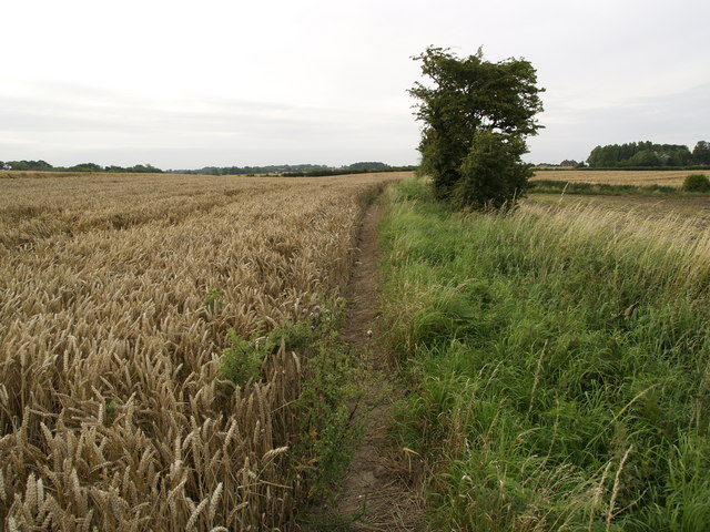 Footpath to Lelley