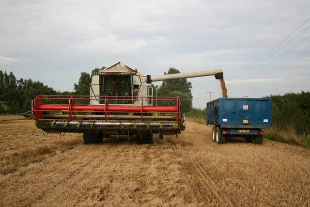 Offloading corn