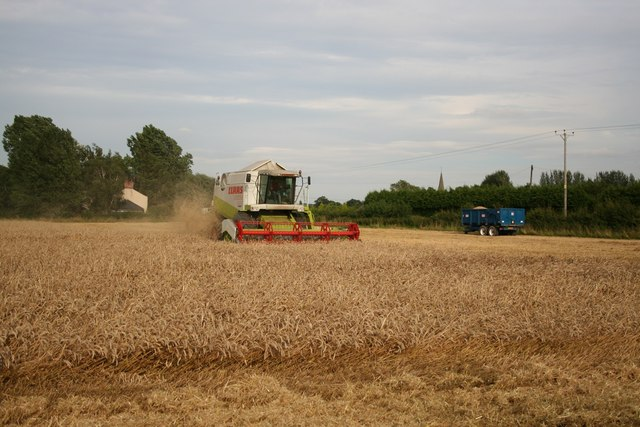 Harby harvest
