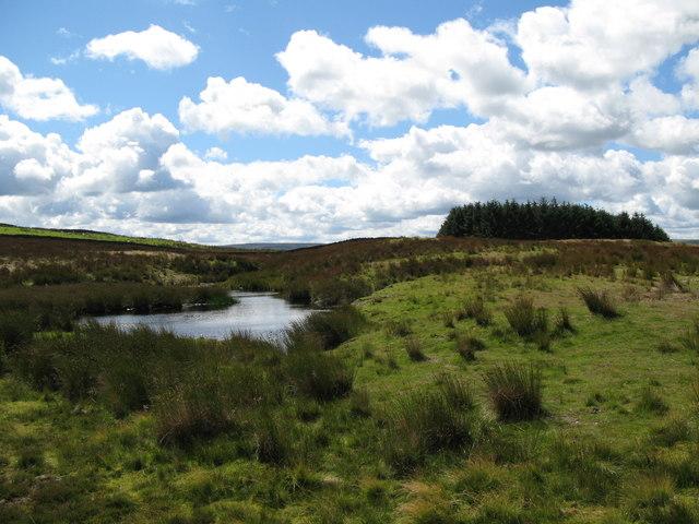Lough near Crawberry Hill