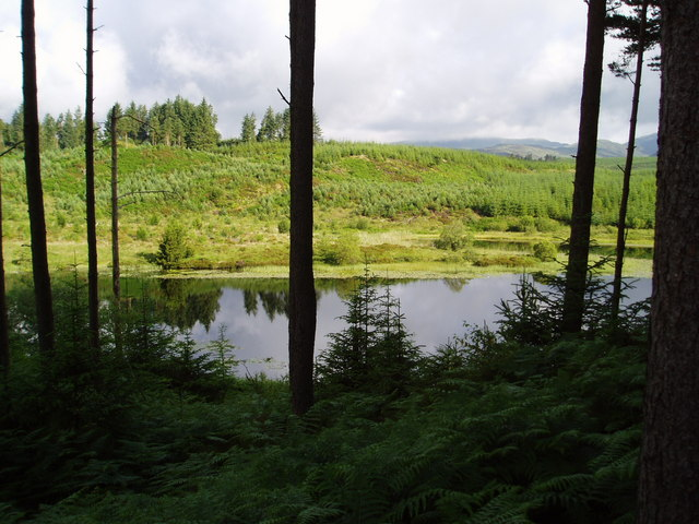 Loch of the Lowes.