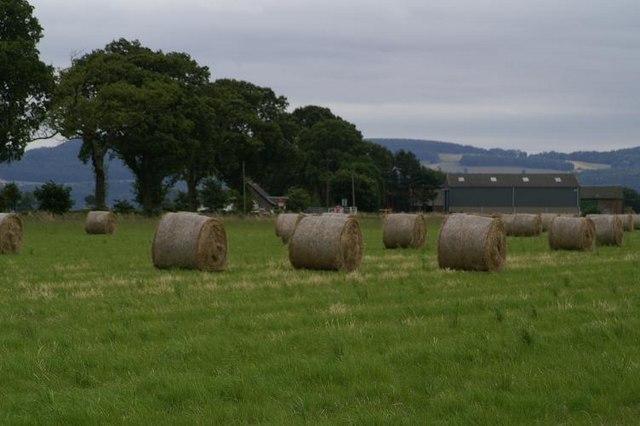 Hay bales at Broomhall