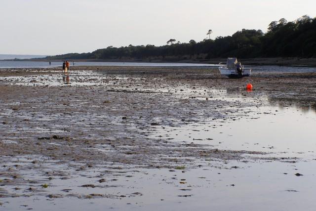 Low tide at Hillhead