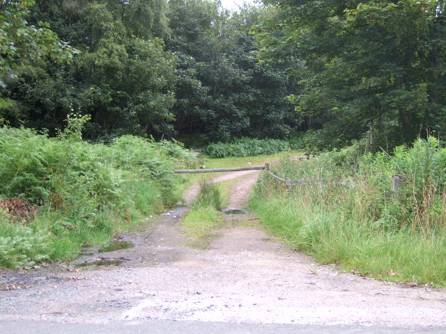 Entrance to Myriewell Wood, Monectt